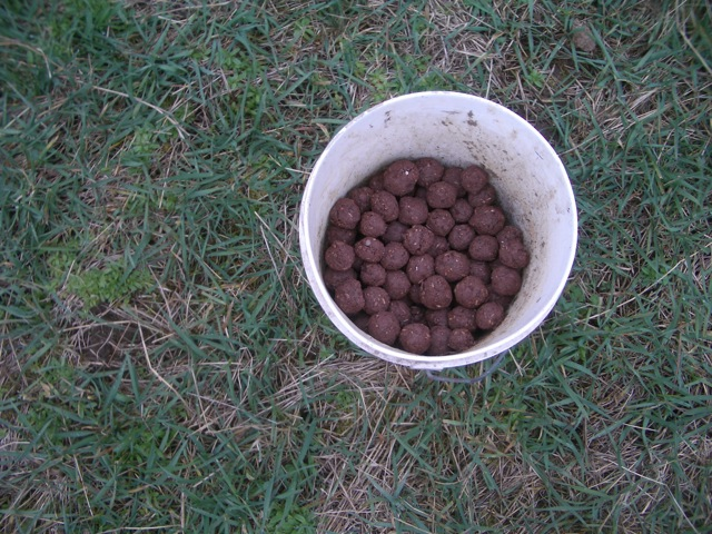 bucket o seedballs